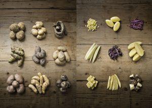 Una selezione di patate italiane e peruviane